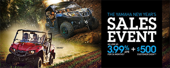 New Year's Sales Event!